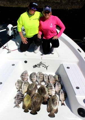 Crystal River Sheep's and Tripletail..