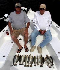 Crystal River Trout...