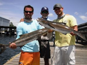 Crystal River Offshore Cobia...