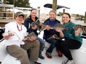 Homosassa Trout & Sheepshead