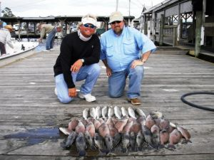 Homosassa Rocks/Crystal River Trout