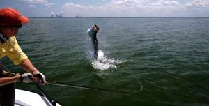 Tarpon on the Fly...