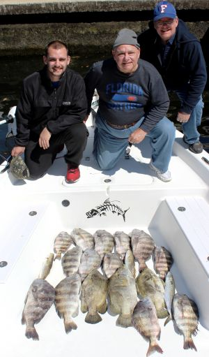 More Crystal River, Sheep's and Tripletail...