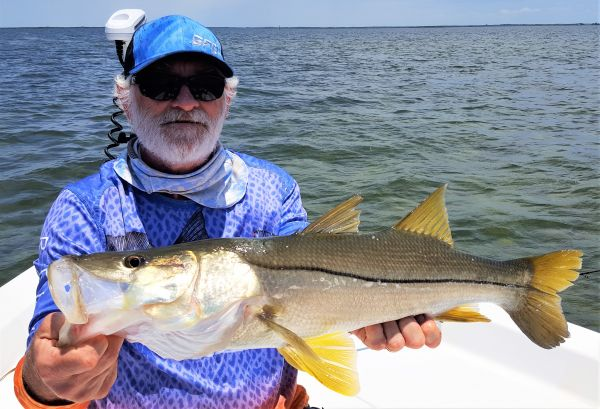 Snook and Reds....