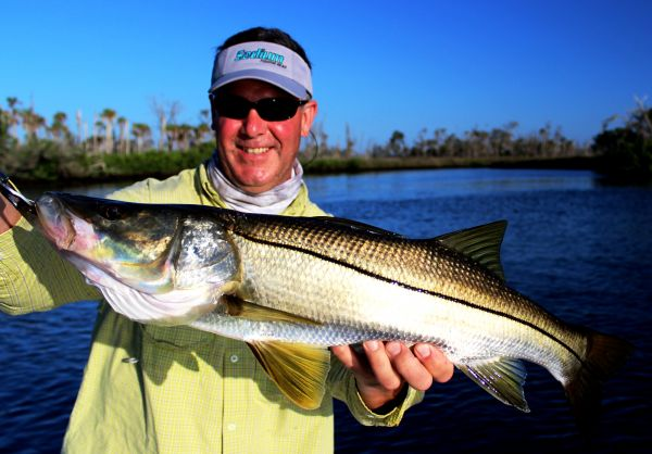 Crystal River Snook...