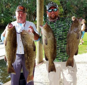 Fun Grouper Day...
