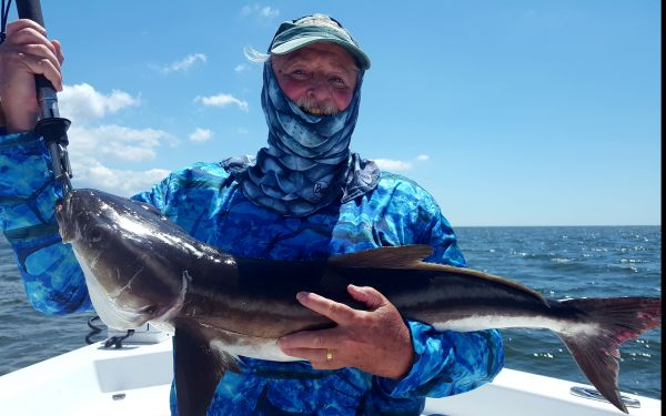 Cobia on the Board...