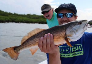 Crystal River Windy Reds...