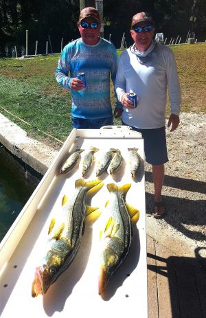 Crystal River Trout & Snook....