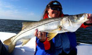 Crystal River Big Snook & Gags....