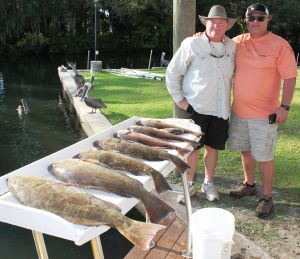 Crystal River Grouper & Reds...