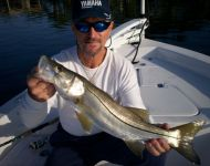 Pretty Snook